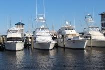 boats boats boats